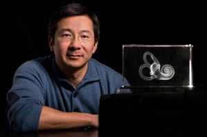 Researchers Identify Forerunners of Inner-Ear Cells That Enable Hearing