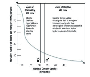 Figure 1. Association between VO2max and mortality.