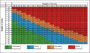 Figure 1. Body mass index chart.