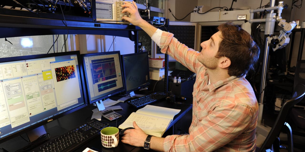 Game Technology Teaches Mice and Men to Hear Better in Noisy Environments
