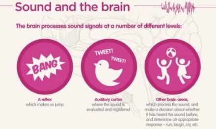 """""""Science of Hearing"""" Infographic Provides Hearing Education"""