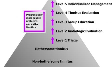 Tinnitus SoundSupport: A Flexible Solution for Both Patients and Hearing Care Professionals