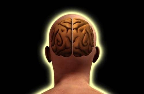 Study Shows How Brain Balances Hearing between Ears