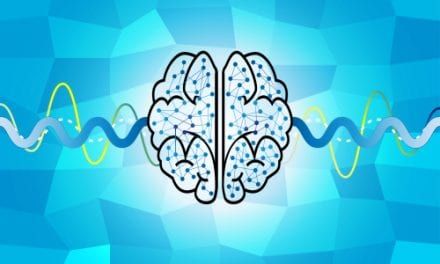 Brain Plasticity Study Provides Clues to Single-sided Deafness