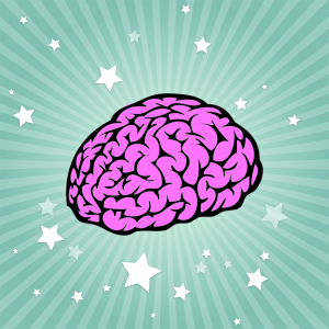 The brain, cognition and amplification