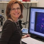 NIDCD Speaker Series: December Talk on How Research Is Preventing Hearing Loss