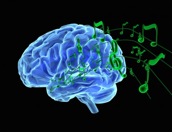 'NPR' Profiles Research of Brain Mechanisms Involved in Processing Speech in Noisy Environments