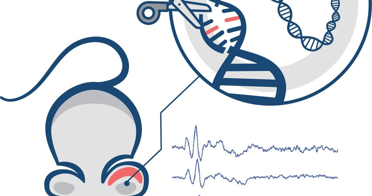 Gene Editing Technique May Help Preserve Hearing in Individuals with Genetic Mutation