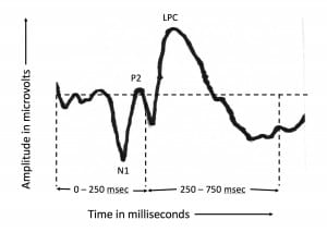 Figure 1. An example of how a typical auditory event-related potential (AERP) appears at a single electrode. The N1 and P2 peaks occur within the first 250 msec after word onset; the LPC peak usually within the 250-750 latency interval.