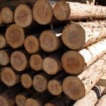 NIOSH Study Shows Hearing Loss Prevalence in Agriculture, Forestry, and Fishing Industries