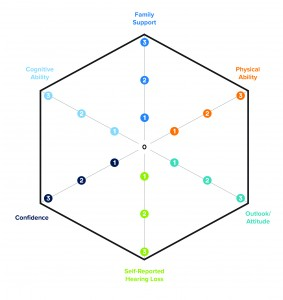 Figure 1. The Communication Hexagram is a tool providers and patients can use to rate six important dimensions affecting service provision options and treatment outcomes.