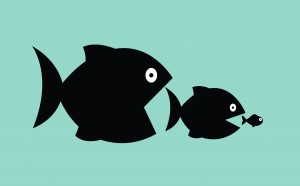 """Figure 3. Industry consolidation and the """"Law of the Fishes"""": The big ones eat the little ones, so the little ones must be fast and numerous. Image: ©Vertes Edmond Mihai 