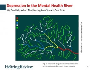 In his webinar, Dr Bray describes how hearing care professionals can screen and provide assistance to those patients who may be suffering from depression.