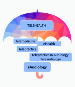 Figure 1. The evolution of terminologies used to describe remote delivery of healthcare and hearing healthcare services.