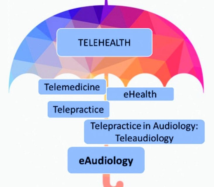 eAudiology: Shifting from Theory to Practice