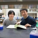UVA Researchers Find Potential Contributor to Age-related Hearing Loss