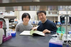 Postdoctoral researcher Ting-Ting Du, left, led the research in the lab of neuroscientist Jung-Bum Shin, right, that explores the role of the inner ear's cuticular plate in hearing loss. (Photo by Dan Addison, University Communications)