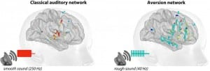 """Smooth and rough sounds activate different brain networks. While smooth sounds induce responses mainly in the """"classical"""" auditory system, rough sounds activate a wider brain network involved in processing aversion and salience."""
