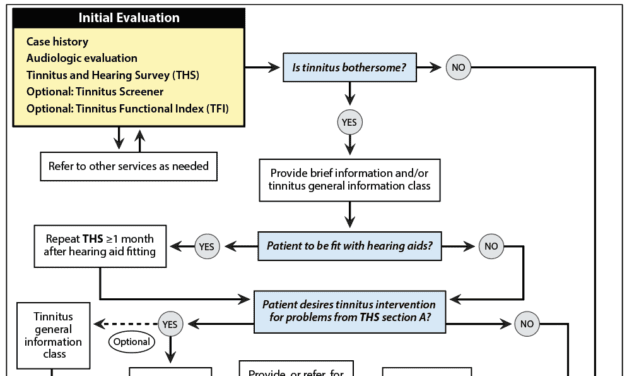 Toward Standardization of Basic Tinnitus  Services by Audiologists