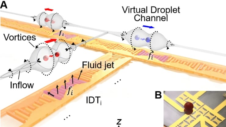 Duke Researchers Use Sound Waves to Transport Droplets on Rewritable Biomedical Chip
