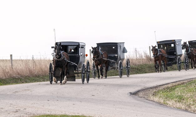 A Field Clinic Improves Hearing Loss Among Amish