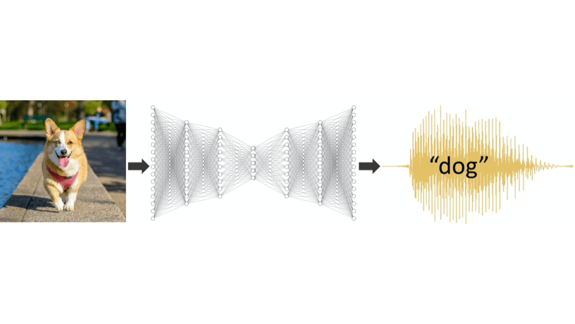 AI Networks Prefer Human Voice