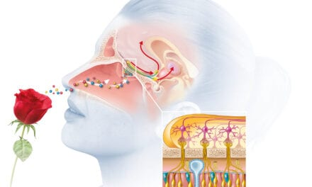 Cochlear Nasal Implant to Treat Smell Loss From COVID